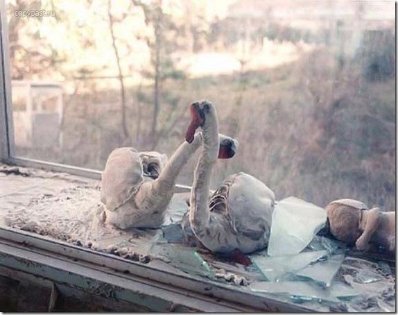 chernobyl-today07